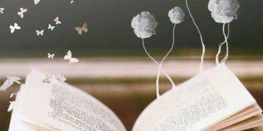 I novizi e la poesia