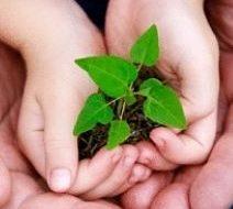 """Roma. Comunità di Vita Cristiana: """"Prendersi cura del Creato"""""""