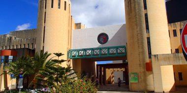 Malta: formati dai gesuiti, universitari in servizio volontario all'estero