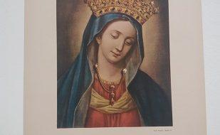 Il culto mariano nelle opere della Provincia Romana della Compagnia